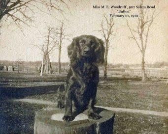 "1910: Miss M. E. Woodruff's ""Button,"" 902 Salem Rd., Elizabeth, NJ"