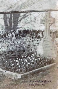 Phoebe Wills Simpson's grave decorated with white tulips