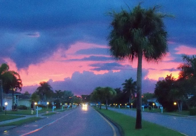 Summer sunsets in SW Florida can be spectacular; was driving down this road at sunset and had to stop for a photo (it looks Photoshopped, but it wasn't).