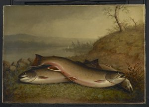 Trout by Walter M. Brackett, ca. 1867 (Wikimedia Commons: Public Domain)
