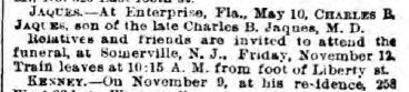 NY Herald, November 11, 1886 (www.fultonhistory.com)