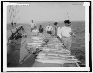 Day's fishing, Palm Beach, Fla. (Library of Congress Prints and Photographs Division)