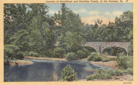 Brodhead Creek postcard