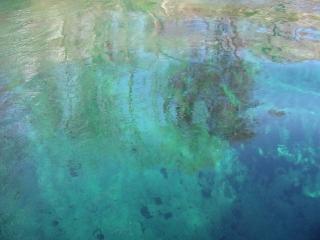 Wakulla Springs - springhead