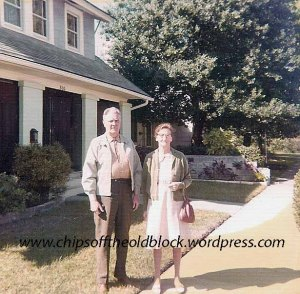 Boles_Newt_and_Violet_StPete_house