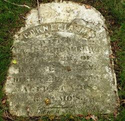 Brodhead graves