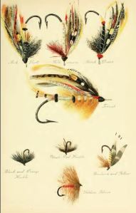 salmon_flies