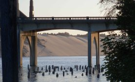 View of the dunes beyond the Siuslaw River bridge at Florence, Oregon